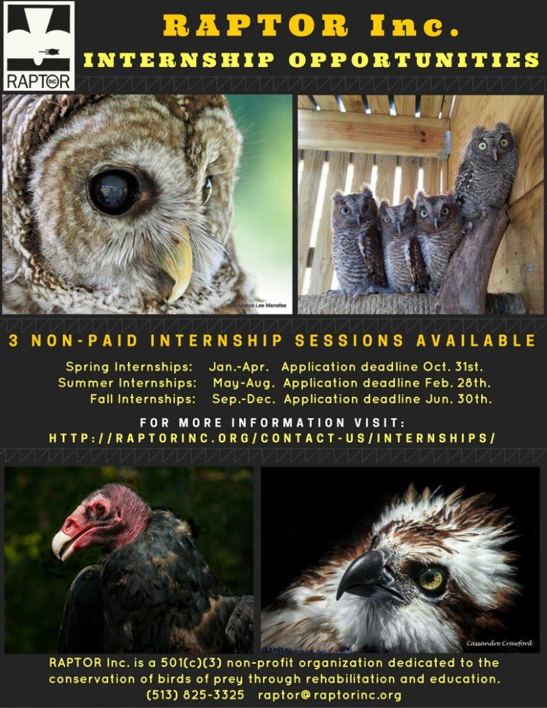 internship-poster